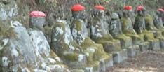 草木ダム周辺 ハイキング(80分)&日光観光