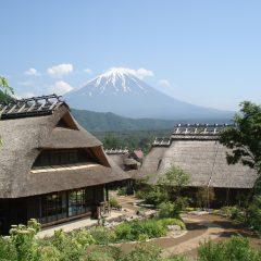 標高約1000mの富士! 鳴沢氷穴&青木ヶ原樹海 の散策と桃の買物