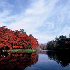 こんにゃくパークと紅葉の軽井沢